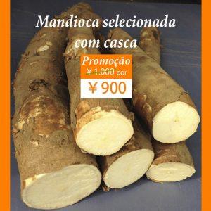 mandioca-fresca-com-casca-wordpress